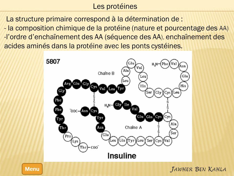 Menu J AWHER B EN K AHLA Les protéines La structure primaire correspond à la détermination de : - la composition chimique de la protéine (nature et pourcentage des AA) -lordre denchaînement des AA (séquence des AA ), enchaînement des acides aminés dans la protéine avec les ponts cystéines.