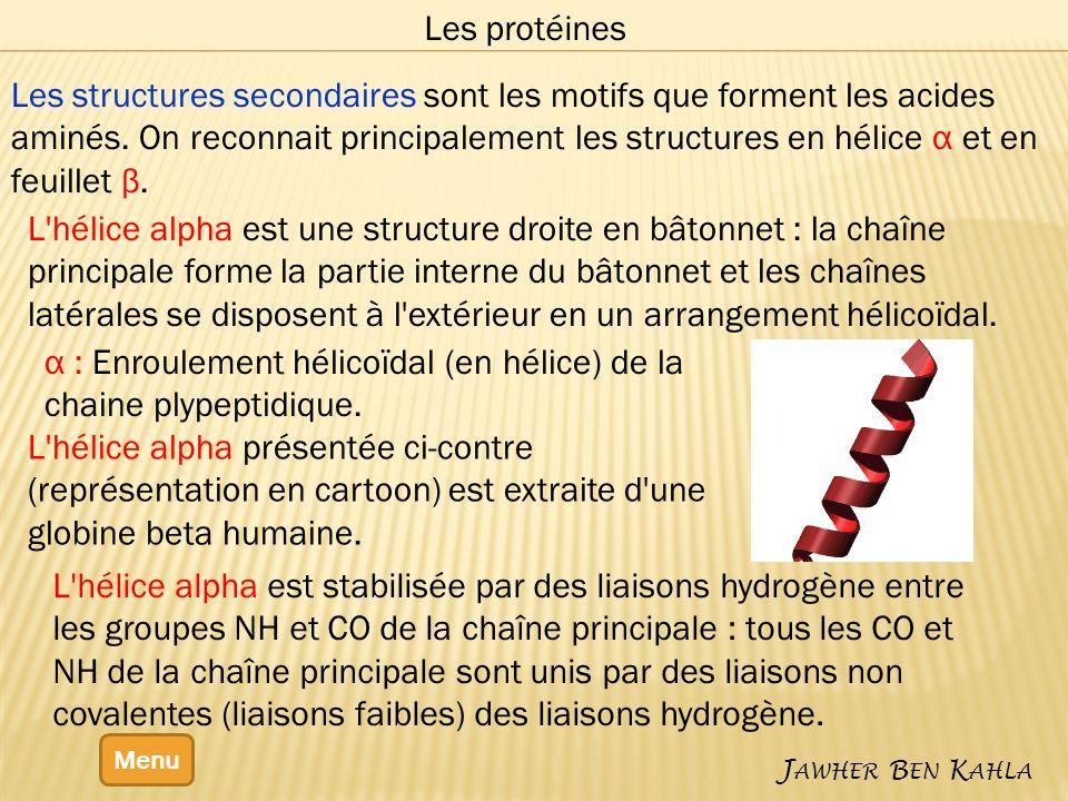 Menu J AWHER B EN K AHLA Les protéines Les structures secondaires sont les motifs que forment les acides aminés. On reconnait principalement les struc