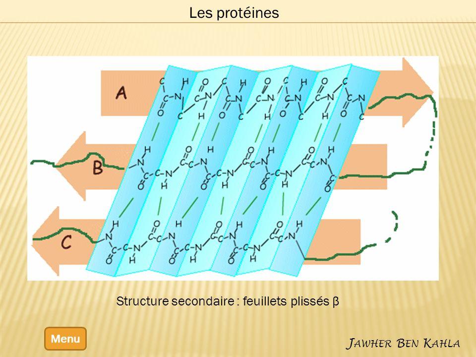 Menu J AWHER B EN K AHLA Les protéines Structure secondaire : feuillets plissés β