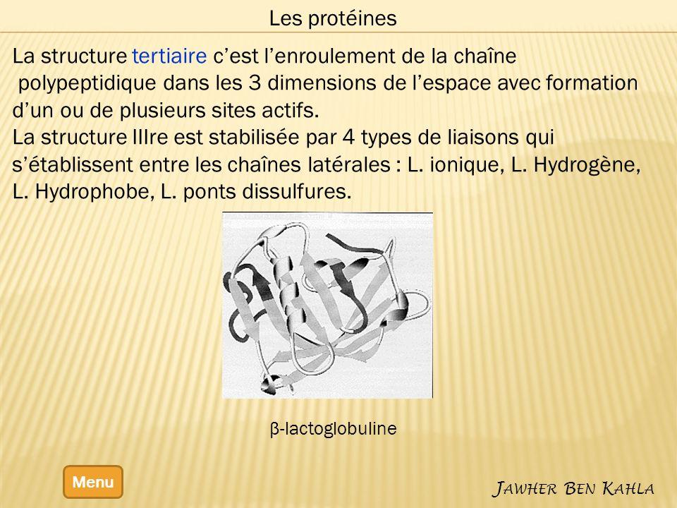 Menu J AWHER B EN K AHLA Les protéines La structure tertiaire cest lenroulement de la chaîne polypeptidique dans les 3 dimensions de lespace avec formation dun ou de plusieurs sites actifs.