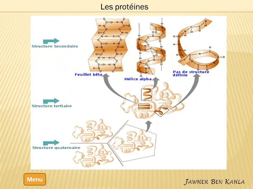 Menu J AWHER B EN K AHLA Les protéines