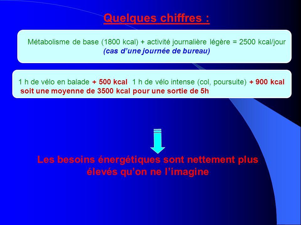 Quelques chiffres : Métabolisme de base (1800 kcal) + activité journalière légère = 2500 kcal/jour (cas dune journée de bureau) 1 h de vélo en balade + 500 kcal, 1 h de vélo intense (col, poursuite) + 900 kcal soit une moyenne de 3500 kcal pour une sortie de 5h Les besoins énergétiques sont nettement plus élevés quon ne limagine