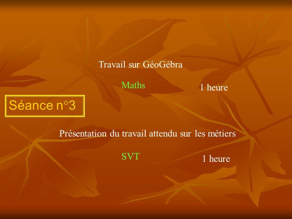 Séance n°3 Travail sur GéoGébra Présentation du travail attendu sur les métiers 1 heure Maths SVT