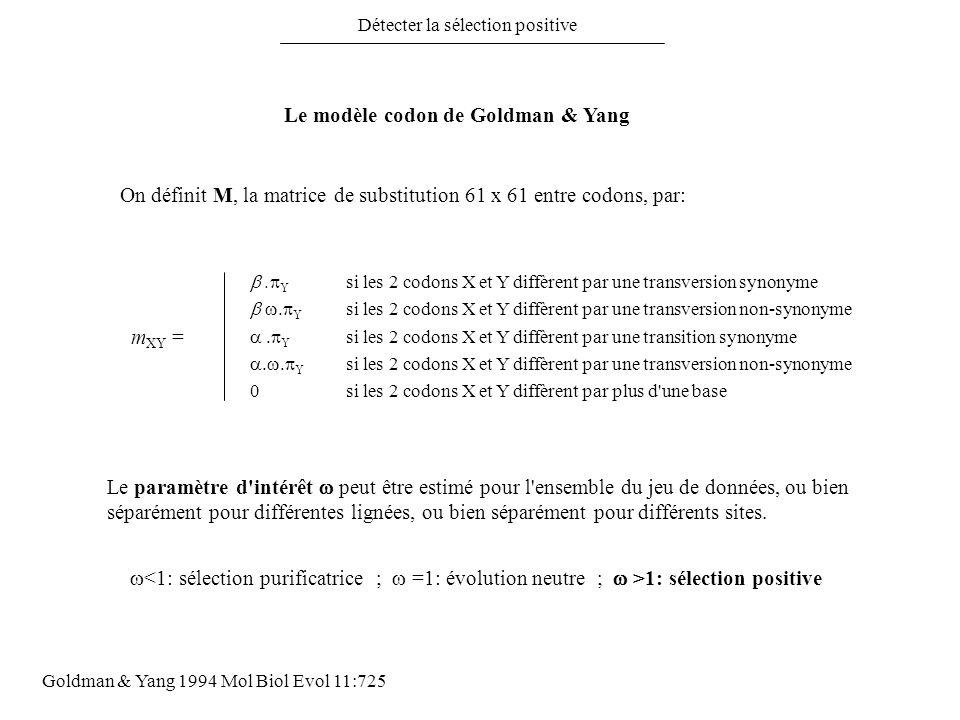 Détecter la sélection positive Le modèle codon de Goldman & Yang 0 si les 2 codons X et Y diffèrent par plus d'une base. Y si les 2 codons X et Y diff