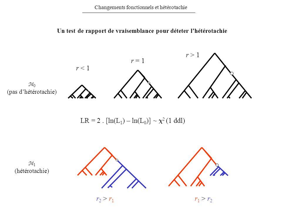LR = 2. [ln(L 1 ) – ln(L 0 )] ~ 2 (1 ddl) r < 1 r = 1 r > 1 M 0 (pas dhétérotachie) r 2 > r 1 r 1 > r 2 M 1 (hétérotachie) Changements fonctionnels et