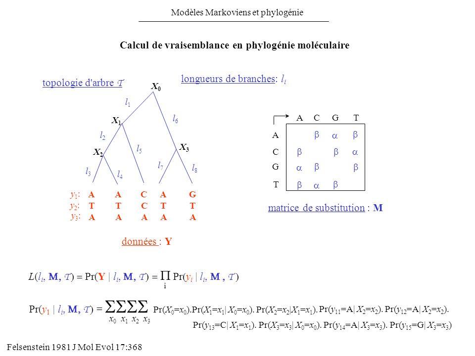 L(l i, T Pr(Y | l i, T Pr y i | l i, T i Pr(y 1 | l i, T = Pr(X 0 =x 0 ).Pr(X 1 =x 1 | X 0 =x 0 ). Pr(X 2 =x 2 |X 1 =x 1 ). Pr(y 11 =A| X 2 =x 2 ). Pr