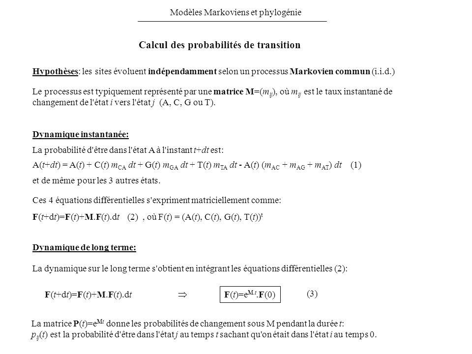 Hypothèses: les sites évoluent indépendamment selon un processus Markovien commun (i.i.d.) Le processus est typiquement représenté par une matrice M=(