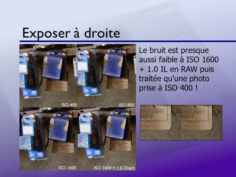 Exposer à droite Le bruit est presque aussi faible à ISO 1600 + 1.0 IL en RAW puis traitée qu'une photo prise à ISO 400 !