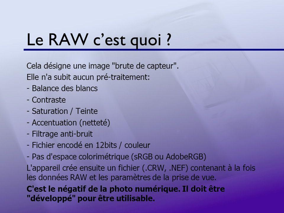 Trucs et Astuces en RAW Le format RAW permet d appliquer des astuces spécifiques.