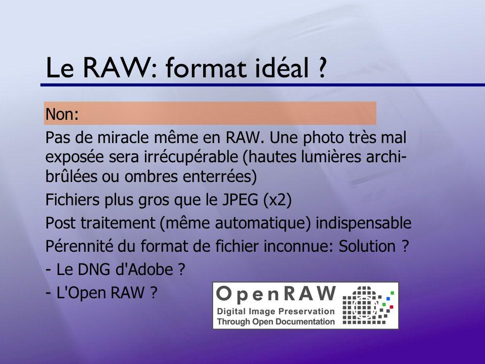Le RAW: format idéal ? Non: Pas de miracle même en RAW. Une photo très mal exposée sera irrécupérable (hautes lumières archi- brûlées ou ombres enterr
