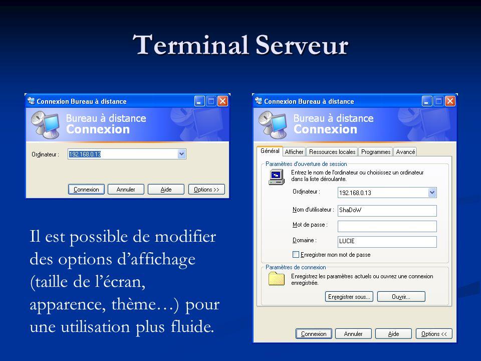 Terminal Serveur Il est possible de modifier des options daffichage (taille de lécran, apparence, thème…) pour une utilisation plus fluide.