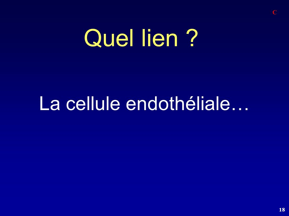18 Quel lien ? La cellule endothéliale… C
