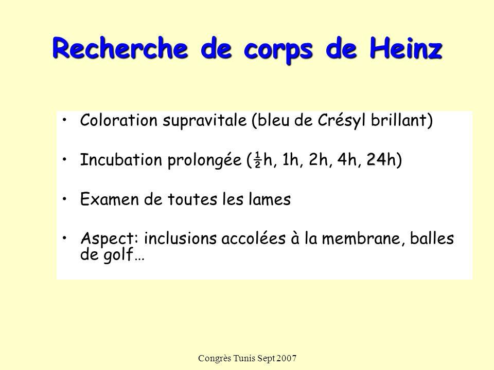 Congrès Tunis Sept 2007 Recherche de corps de Heinz Coloration supravitale (bleu de Crésyl brillant) 24Incubation prolongée (½h, 1h, 2h, 4h, 24h) Exam