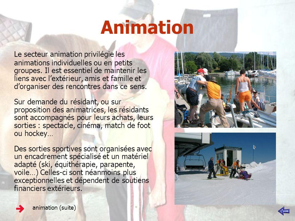 Animation Le secteur animation privilégie les animations individuelles ou en petits groupes. Il est essentiel de maintenir les liens avec lextérieur,