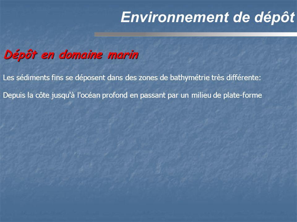 Environnement de dépôt Dépôt en domaine marin Les sédiments fins se déposent dans des zones de bathymétrie très différente: Depuis la côte jusqu'à l'o