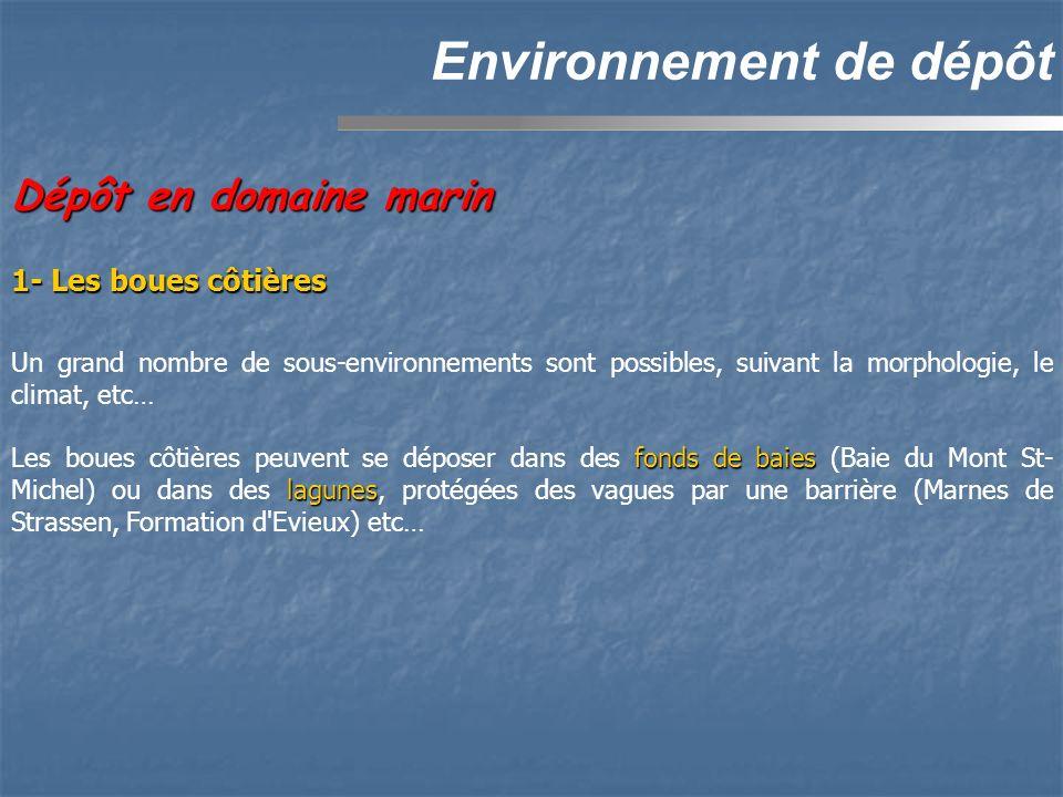 Environnement de dépôt Dépôt en domaine marin Un grand nombre de sous-environnements sont possibles, suivant la morphologie, le climat, etc… fonds de