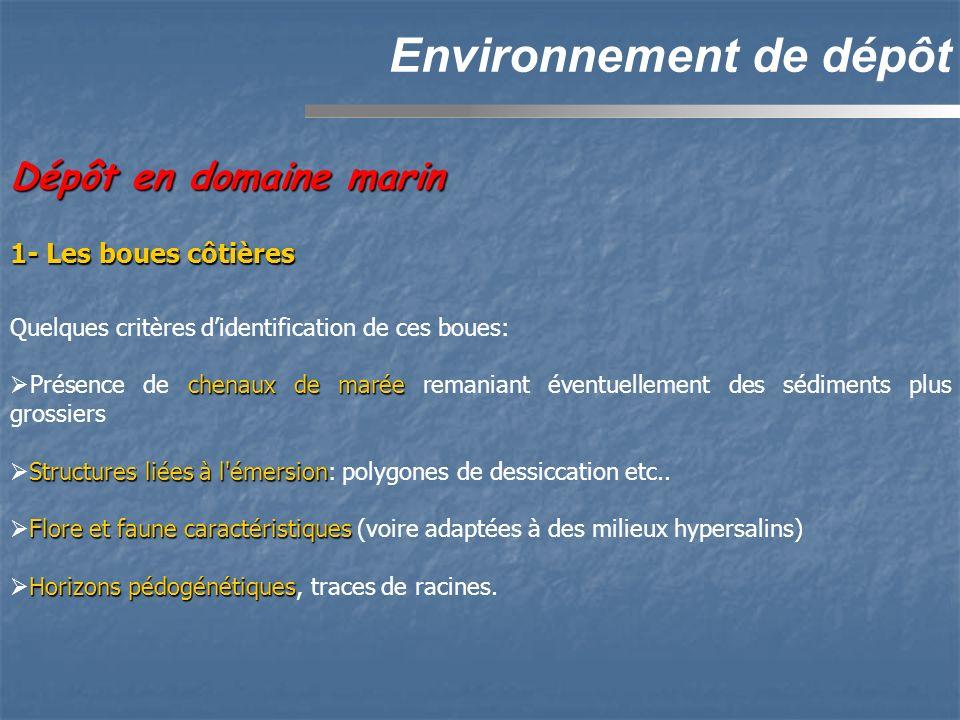 Environnement de dépôt Dépôt en domaine marin Quelques critères didentification de ces boues: chenaux de marée Présence de chenaux de marée remaniant