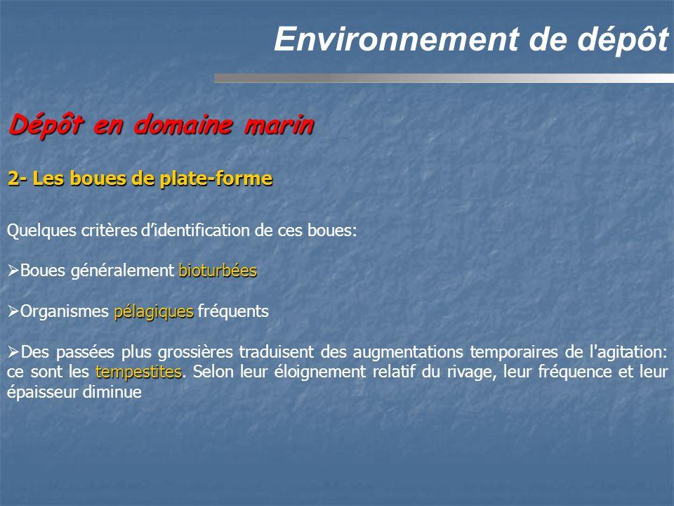 Environnement de dépôt Dépôt en domaine marin Quelques critères didentification de ces boues: bioturbées Boues généralement bioturbées pélagiques Orga