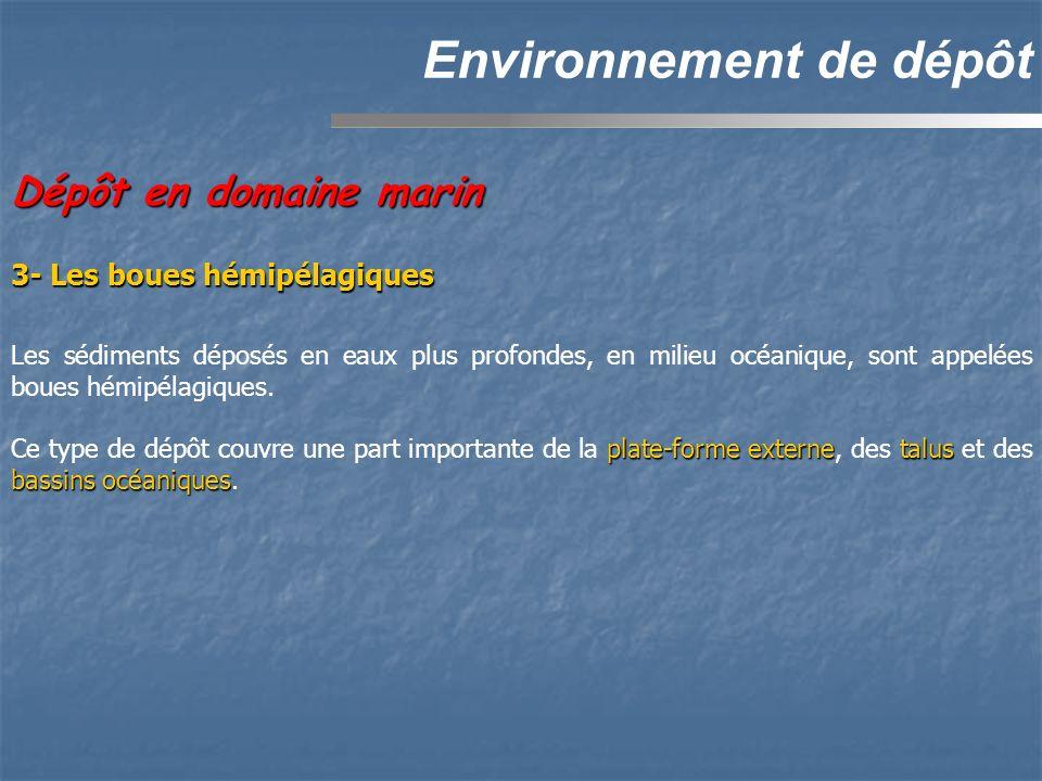 Environnement de dépôt Dépôt en domaine marin Les sédiments déposés en eaux plus profondes, en milieu océanique, sont appelées boues hémipélagiques.
