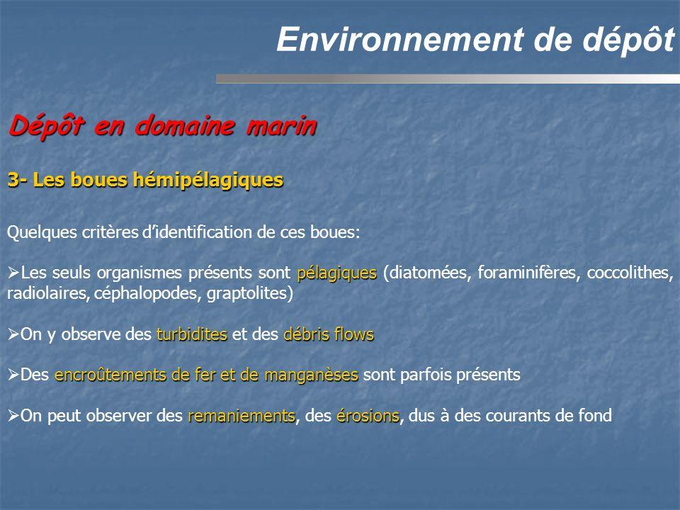 Environnement de dépôt Dépôt en domaine marin Quelques critères didentification de ces boues: pélagiques Les seuls organismes présents sont pélagiques