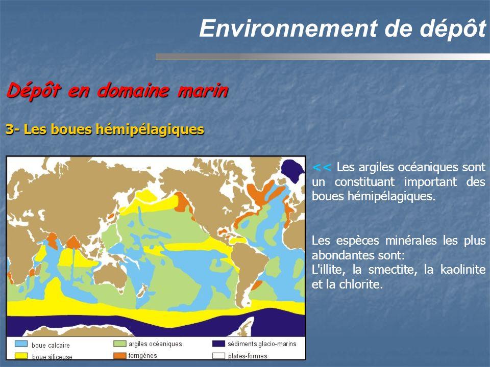 Environnement de dépôt Dépôt en domaine marin 3- Les boues hémipélagiques << Les argiles océaniques sont un constituant important des boues hémipélagi