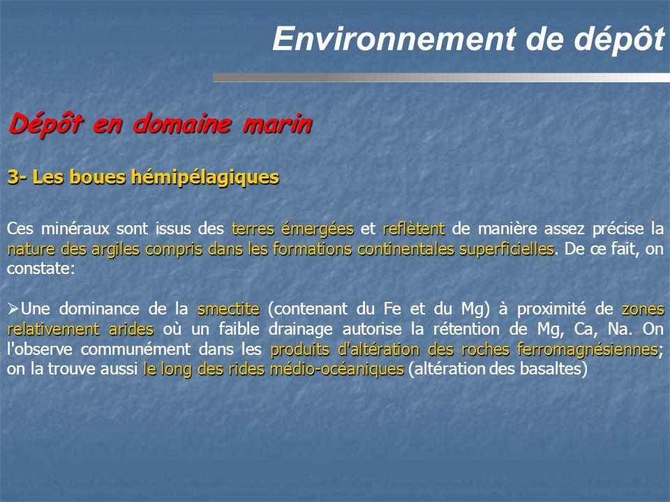 Environnement de dépôt Dépôt en domaine marin 3- Les boues hémipélagiques terres émergéesreflètent nature des argiles compris dans les formations cont