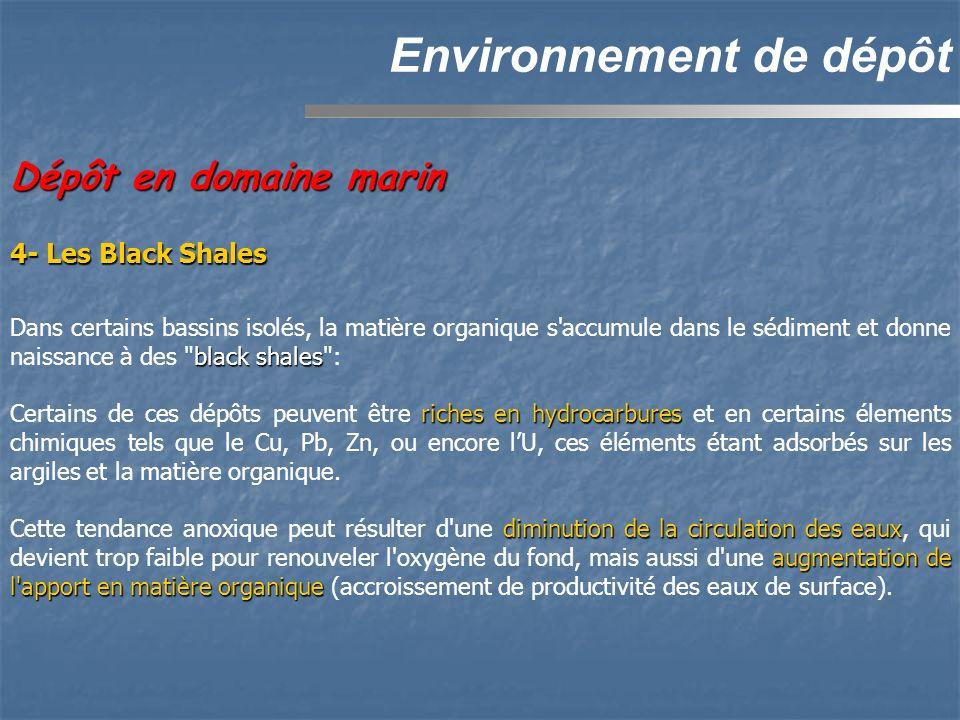 Environnement de dépôt Dépôt en domaine marin black shales Dans certains bassins isolés, la matière organique s'accumule dans le sédiment et donne nai