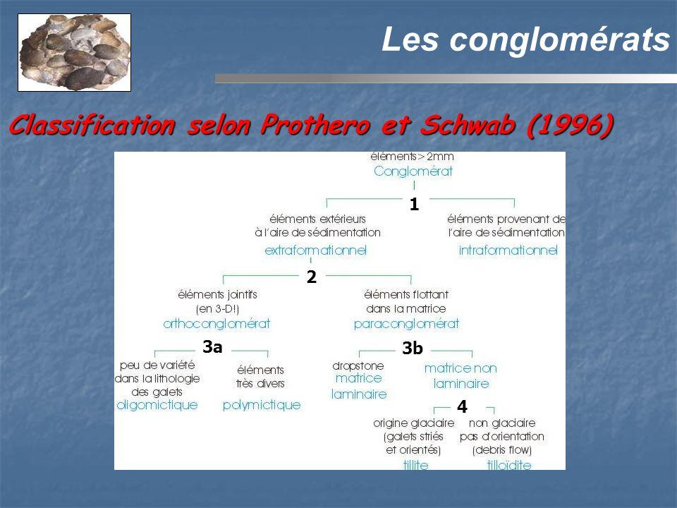 Les conglomérats 3a 2 3b 4 1 Classification selon Prothero et Schwab (1996)
