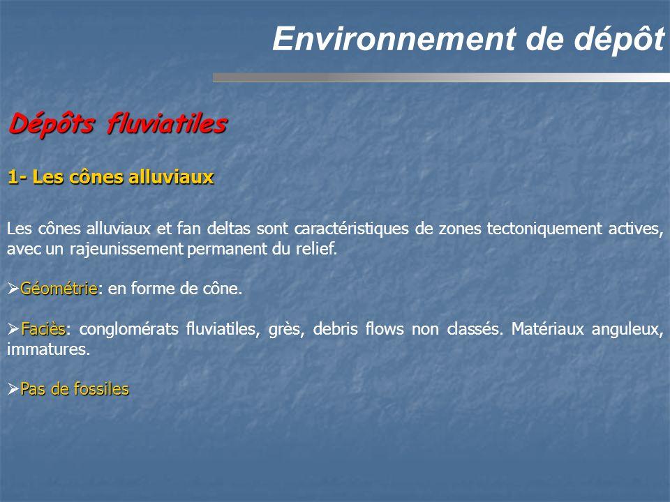 Dépôts fluviatiles Environnement de dépôt 1- Les cônes alluviaux Les cônes alluviaux et fan deltas sont caractéristiques de zones tectoniquement activ