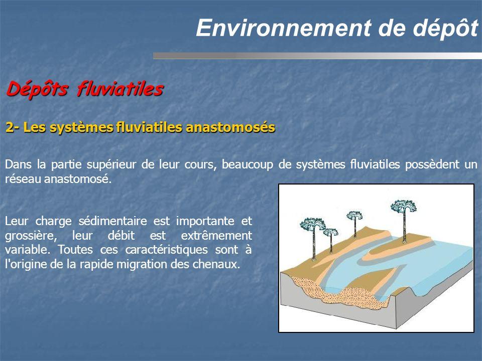 Dépôts fluviatiles Environnement de dépôt 2- Les systèmes fluviatiles anastomosés Dans la partie supérieur de leur cours, beaucoup de systèmes fluviatiles possèdent un réseau anastomosé.