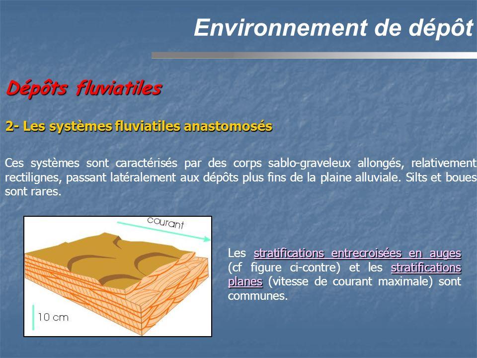 Dépôts fluviatiles Environnement de dépôt Ces systèmes sont caractérisés par des corps sablo-graveleux allongés, relativement rectilignes, passant latéralement aux dépôts plus fins de la plaine alluviale.