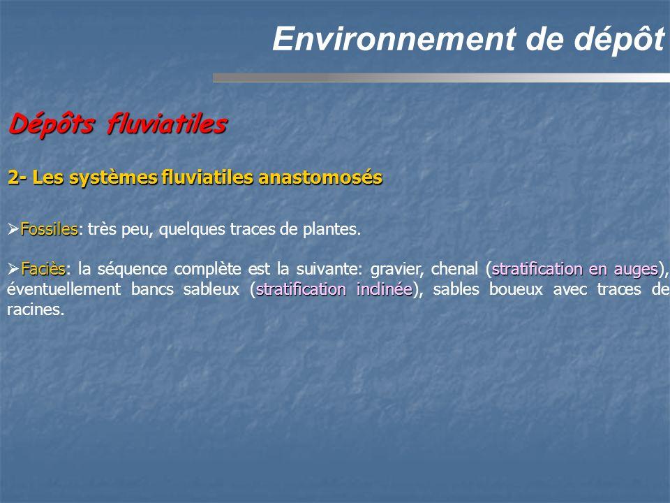Dépôts fluviatiles Environnement de dépôt Fossiles Fossiles: très peu, quelques traces de plantes.