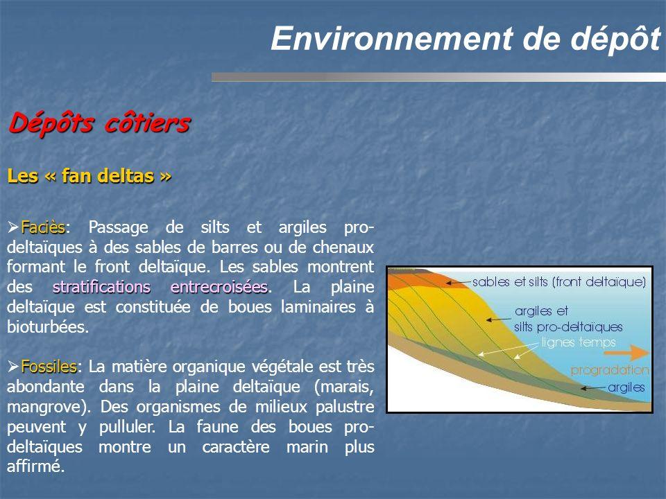 Environnement de dépôt Faciès stratifications entrecroisées Faciès: Passage de silts et argiles pro- deltaïques à des sables de barres ou de chenaux formant le front deltaïque.
