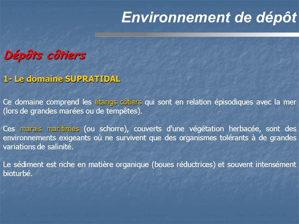 Dépôts côtiers Environnement de dépôt 1- Le domaine SUPRATIDAL étangs côtiers Ce domaine comprend les étangs côtiers qui sont en relation épisodiques