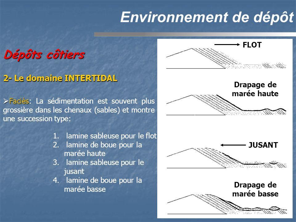 Dépôts côtiers Environnement de dépôt 2- Le domaine INTERTIDAL FLOT Drapage de marée haute JUSANT Drapage de marée basse 1. lamine sableuse pour le fl