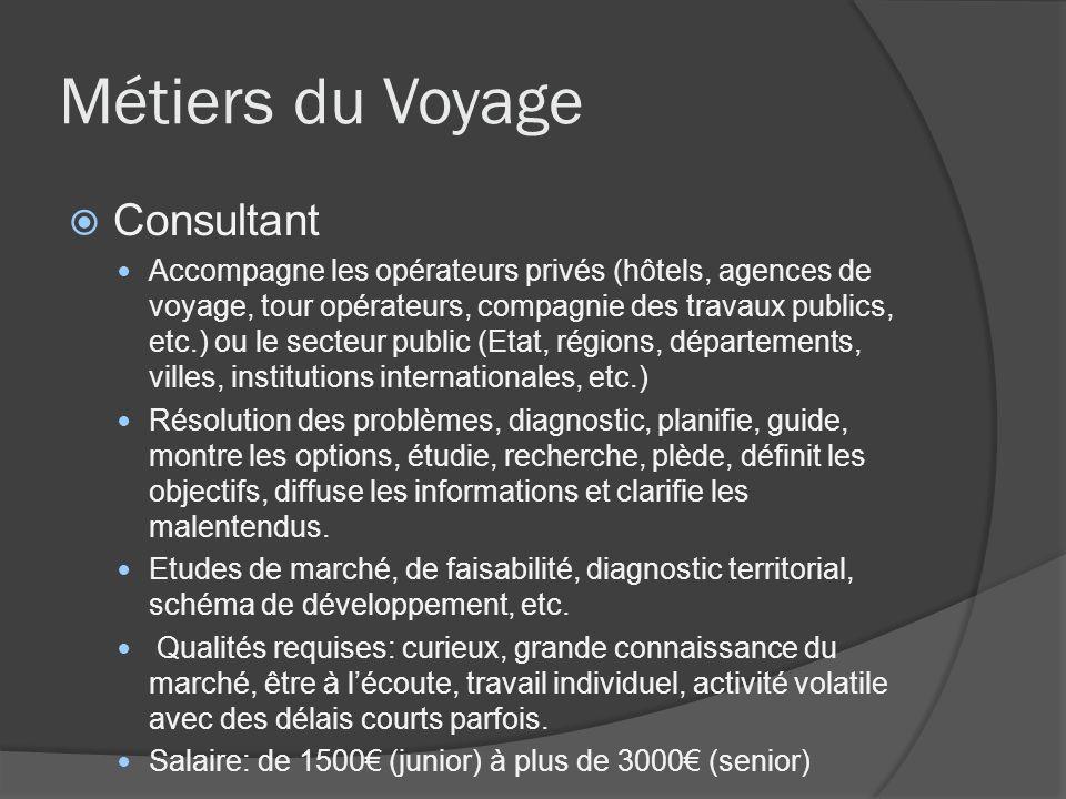 Métiers du Voyage Consultant Accompagne les opérateurs privés (hôtels, agences de voyage, tour opérateurs, compagnie des travaux publics, etc.) ou le