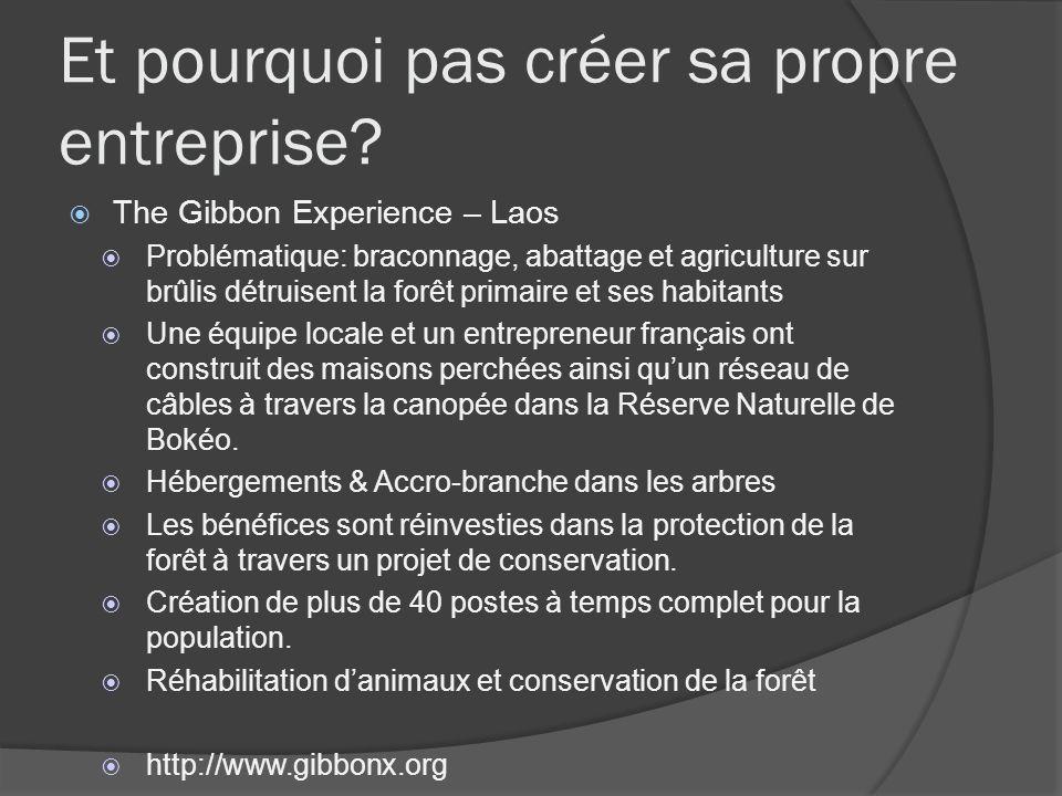 Et pourquoi pas créer sa propre entreprise? The Gibbon Experience – Laos Problématique: braconnage, abattage et agriculture sur brûlis détruisent la f
