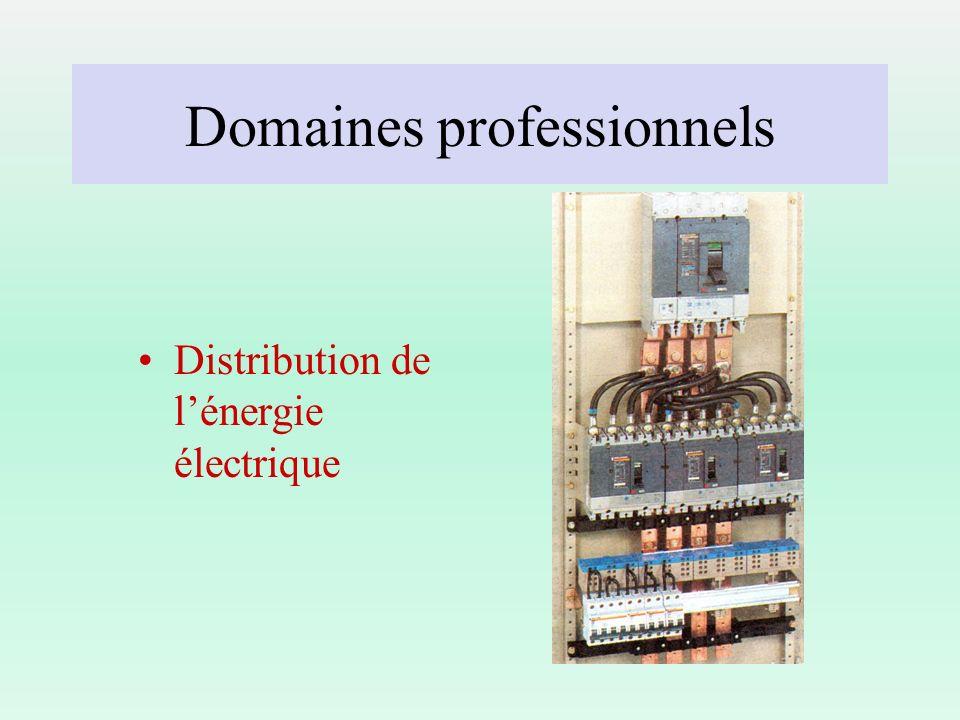 Domaines professionnels Distribution de lénergie électrique
