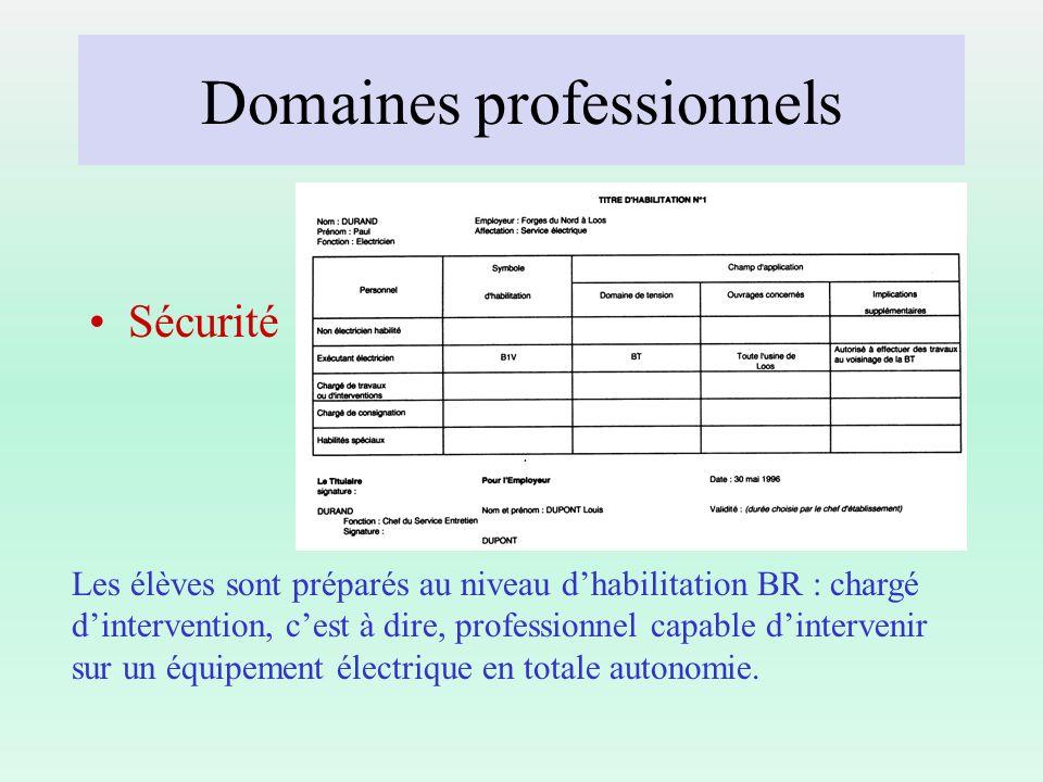 Domaines professionnels Sécurité Les élèves sont préparés au niveau dhabilitation BR : chargé dintervention, cest à dire, professionnel capable dinter