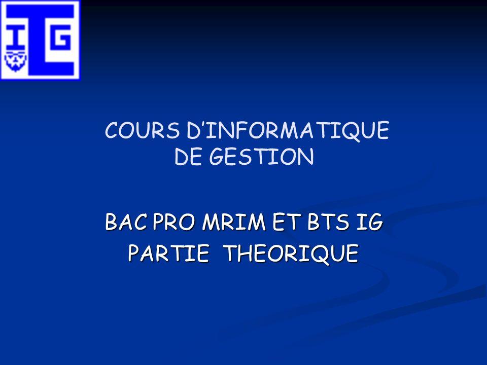 COURS DINFORMATIQUE DE GESTION BAC PRO MRIM ET BTS IG PARTIE THEORIQUE