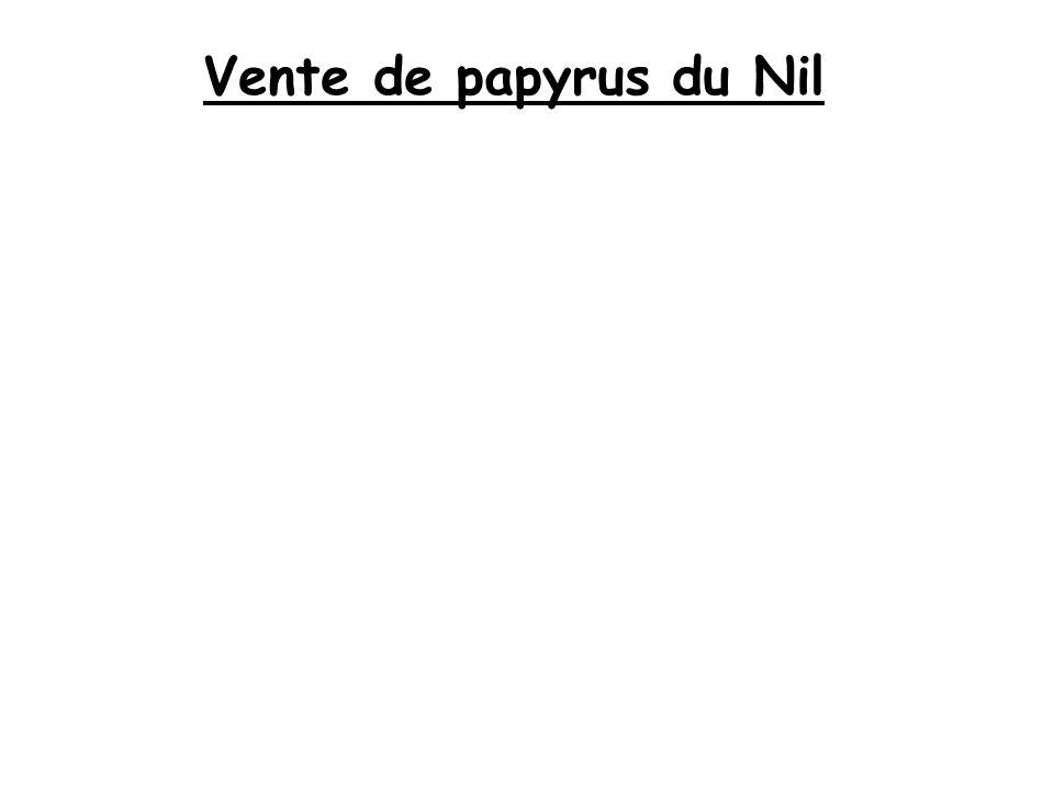 Vente de papyrus du Nil