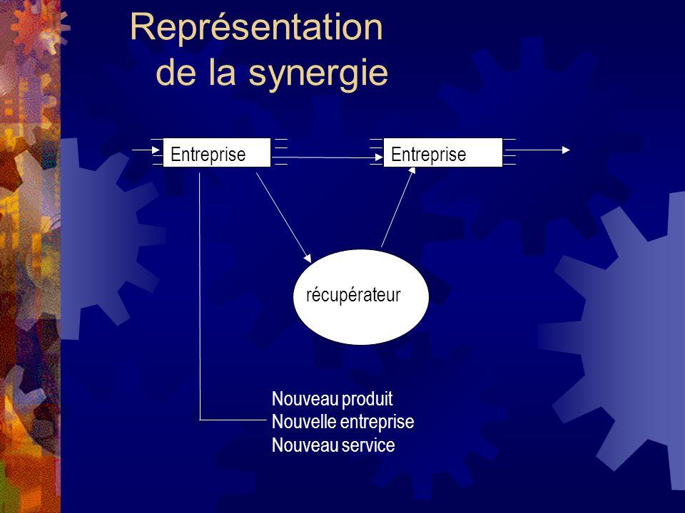 Représentation de la synergie récupérateur Entreprise Nouveau produit Nouvelle entreprise Nouveau service
