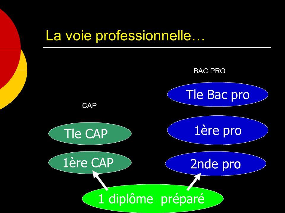 La voie professionnelle… 1 diplôme préparé 1ère CAP 2nde pro 1ère pro Tle Bac pro Tle CAP CAP BAC PRO