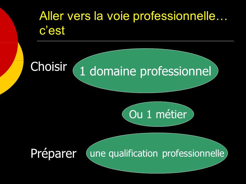 Aller vers la voie professionnelle… cest 1 domaine professionnel Ou 1 métier Choisir une qualification professionnelle Préparer
