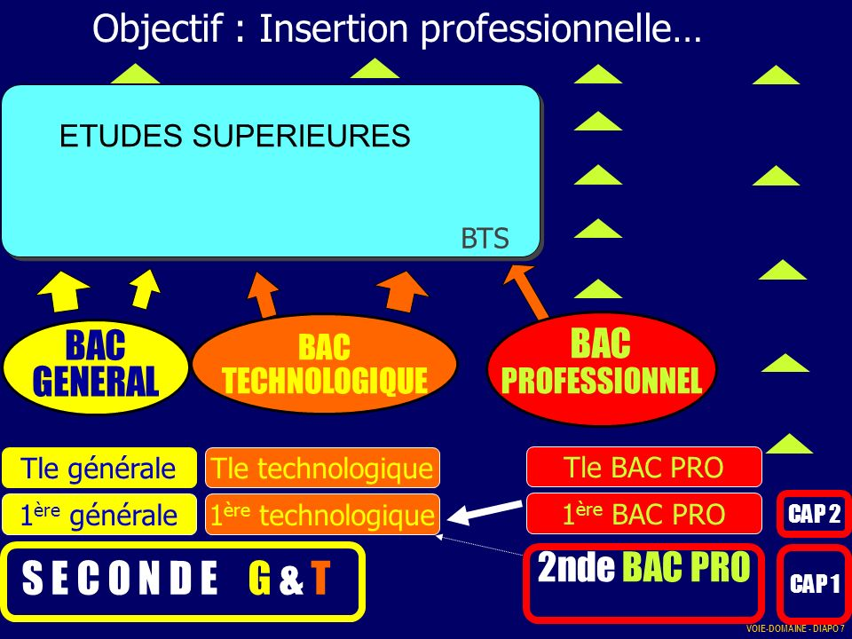 S E C O N D E G & T Études supérieures : VOIE-DOMAINE - DIAPO 7 Objectif : Insertion professionnelle… BTS CAP 1 CAP 2 BAC PROFESSIONNEL 2nde BAC PRO 1