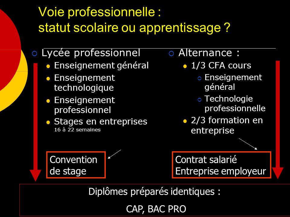 Voie professionnelle : statut scolaire ou apprentissage ? Alternance : 1/3 CFA cours Enseignement général Technologie professionnelle 2/3 formation en