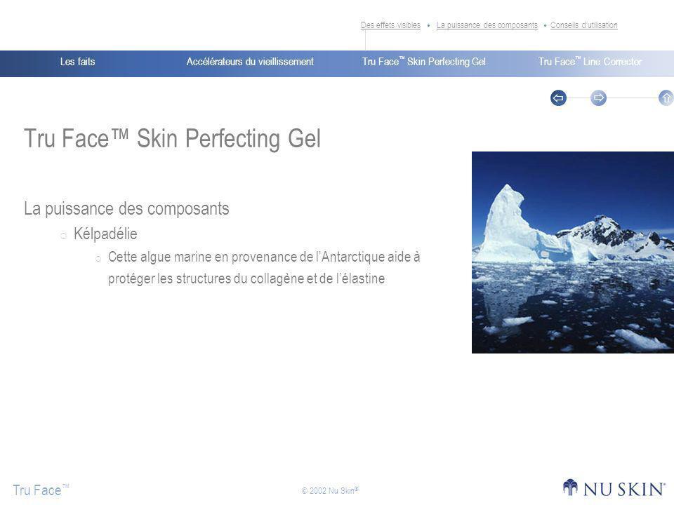 Accélérateurs du vieillissementLes faitsTru Face Skin Perfecting GelTru Face Line Corrector Tru Face © 2002 Nu Skin ® Tru Face Skin Perfecting Gel La