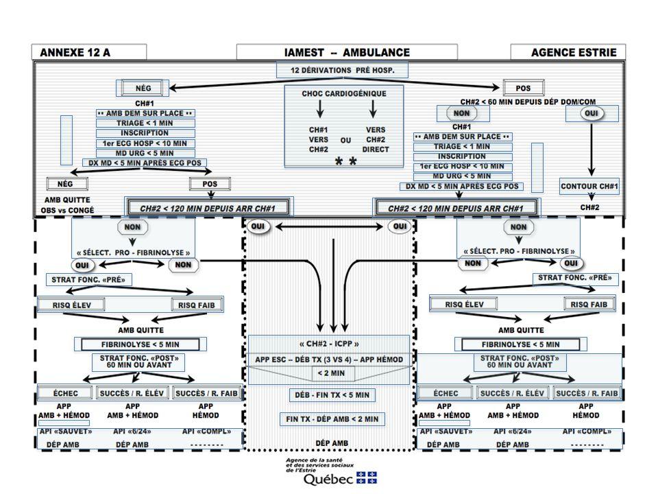 ANNEXE 16-4: GROUPE DE TRAVAIL IAMEST-AGENCE ESTRIE RECOMMANDATIONS «MILIEU PRÉ HOSPITALIER» 1.