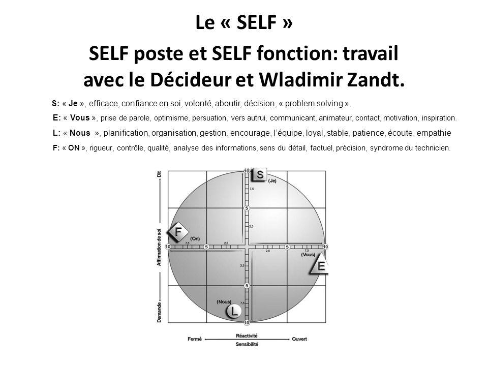 Le « SELF » SELF poste et SELF fonction: travail avec le Décideur et Wladimir Zandt. S: « Je », efficace, confiance en soi, volonté, aboutir, décision