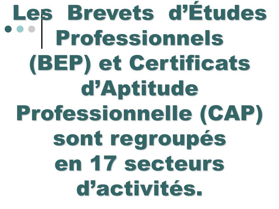 Les Brevets dÉtudes Professionnels (BEP) et Certificats dAptitude Professionnelle (CAP) sont regroupés en 17 secteurs dactivités.